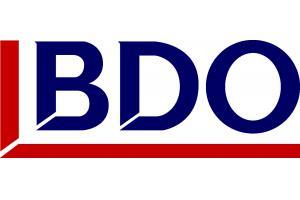 BDO services